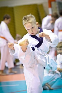 karate23