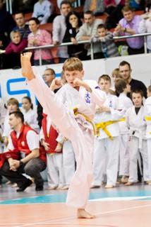 karate_mp1