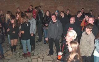 koncerty8