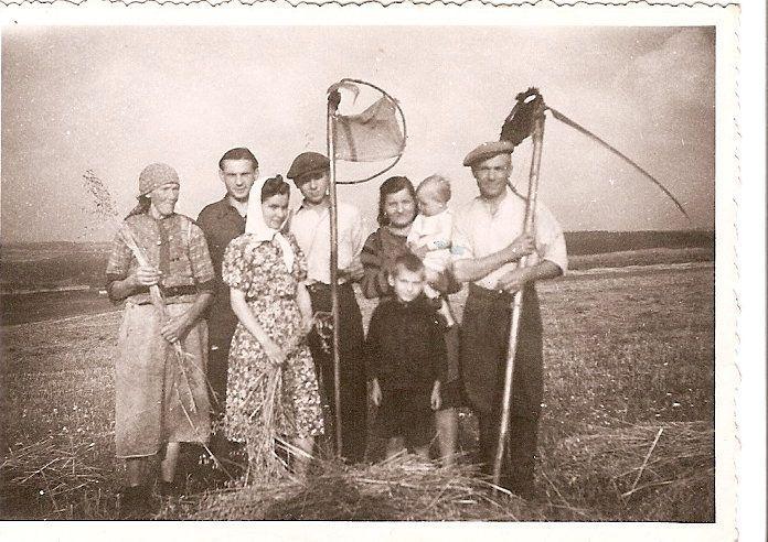 20. Żniwa na polach Czarnej Góry. Zdjęcie wykonano w 1943 lub 1944 roku. Fot. Ze zbiorów Teresy Rusoń.