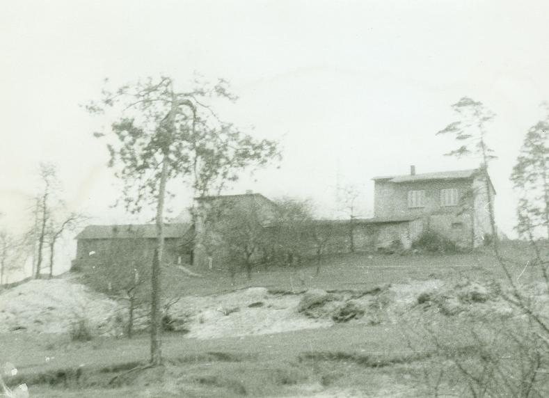 22. Przez Czarną Górę miała zostać wybudowana droga. Wycięto las, zrujnowano teren, a mieszkańcom groziło wyburzenie domostw. Fot. Ze zbiorów Teresy Rusoń.