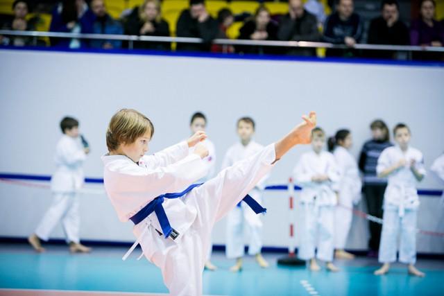 karate2013