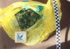 bukowno marihuana2