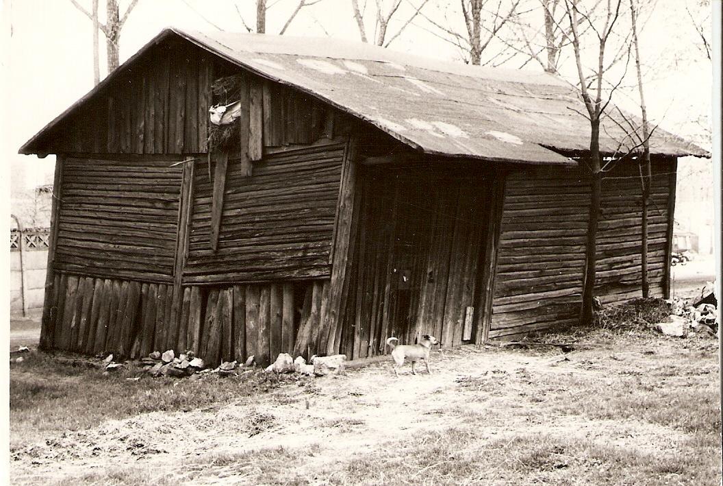 51. Stodoła przy dworze Mroczkowskich. 1972 rok. Fot. Ze zbiorów Ryszarda Maliszewskiego.