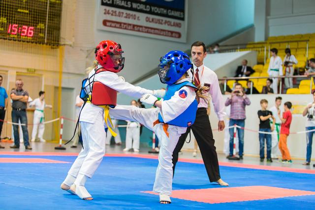 karate kumite 2014