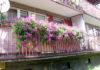 balkony konkurs osiedle mlodych1