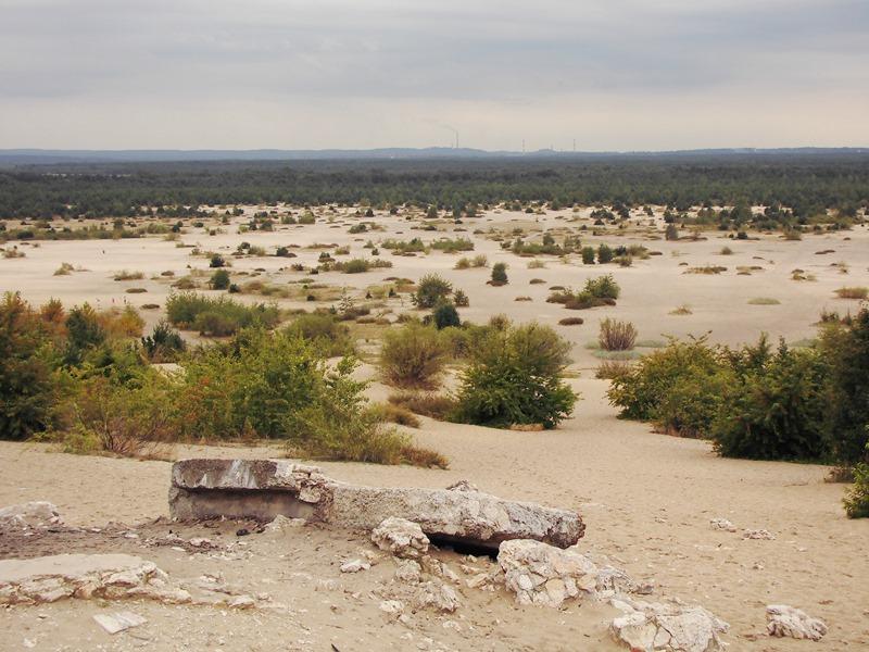 pustynia polnoc