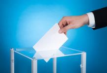 urna wybory