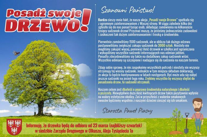 posadź swoje drzewo 2