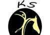 flika logo