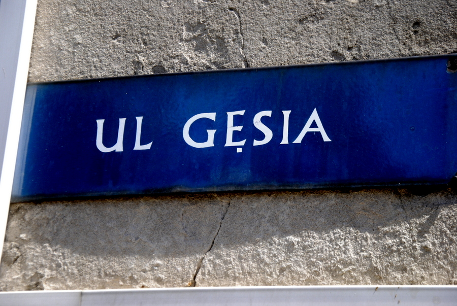 gesia 5