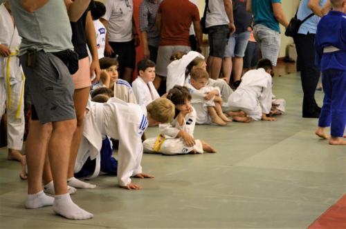 XIII Międzynarodowy Turniej Judo w Wolbromiu - niedziela 12.09.2021
