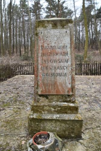 stary pomnik